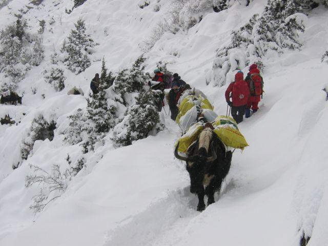 Himalaje Khumbu Everest trekking 013