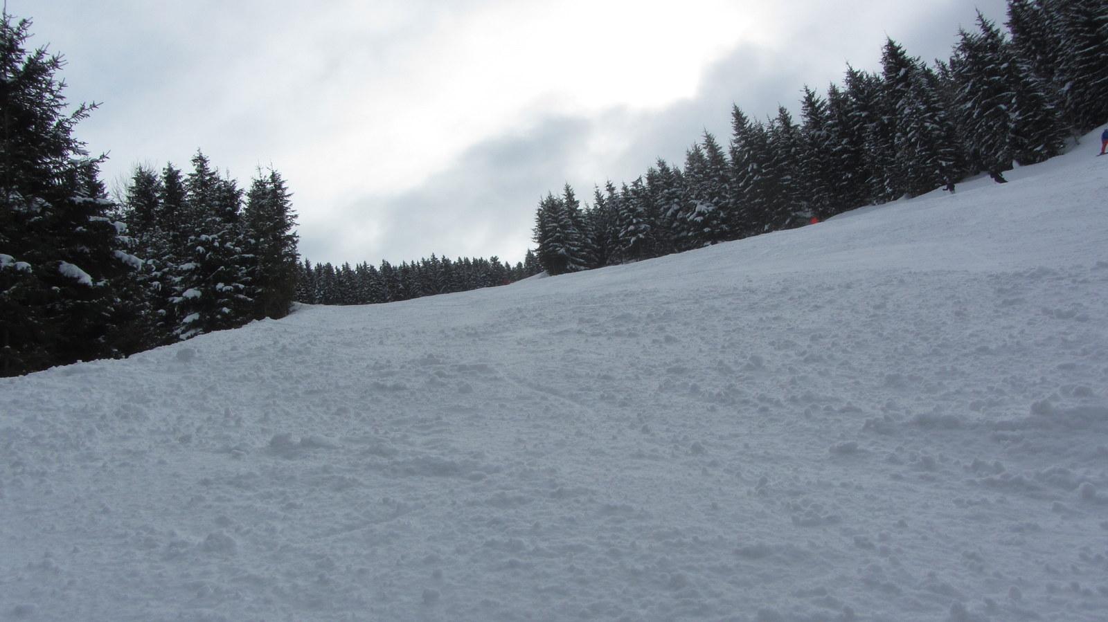 2015.03.01 Ahorn W Mayrhofen (16)