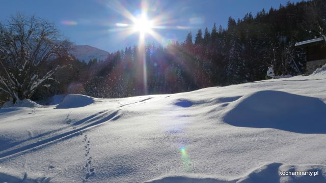 Klosters 2018.12  (34)