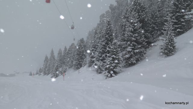 Jungfrau 2019.03.01  (68).JPG