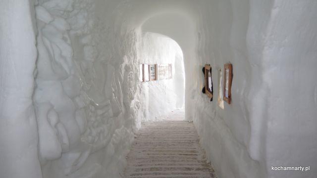 Zermatt 2019.04.15  (8)